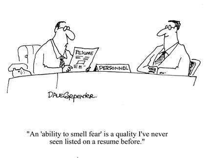 how do you write a resume tips and tricks infobarrel