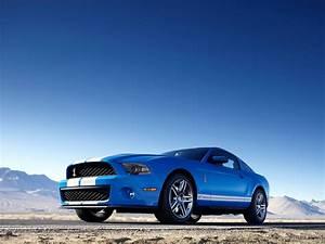 Mustang Shelby Gt 500 Prix : ford mustang shelby gt500 specs photos 2009 2010 2011 2012 autoevolution ~ Medecine-chirurgie-esthetiques.com Avis de Voitures