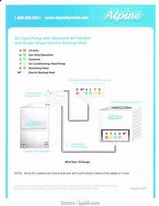 Nest Wiring Diagram Single Stage Heating Cooling