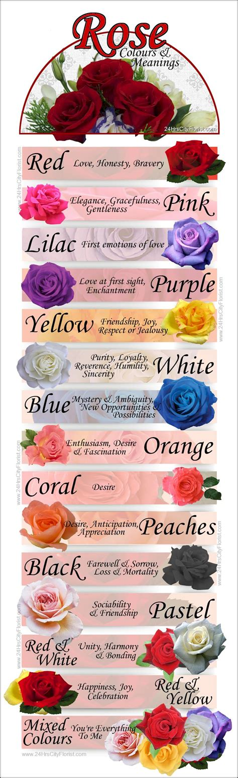 roses colors meaning roses