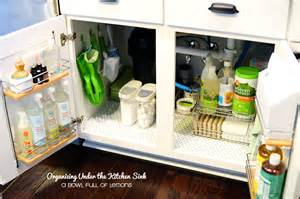 the kitchen sink storage ideas purge day 30 the kitchen sink a bowl of lemons