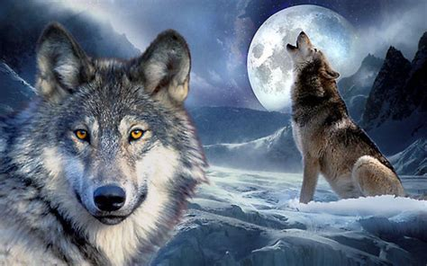 Anime Wolf Wallpaper Android by 3d Wolf Wallpapers Android Apps And Tests Androidpit