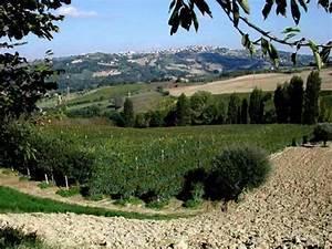 Immobilien In Italien Von Privat : jochen sewald italien immobilien freier unabh ngiger versicherungsmakler ~ Frokenaadalensverden.com Haus und Dekorationen