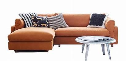 Living Cleaning Basic Transparent Furniture Sofa Vacuum