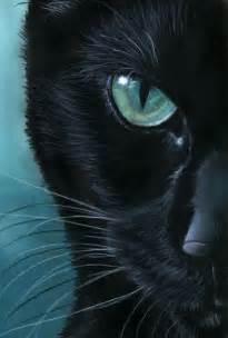 black cat painting best 25 cat paintings ideas on black cat