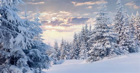 4k Snow Wallpapers High Quality  Download Free
