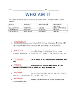 who am i worksheet answers science who best free