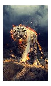 Desktop wallpaper angry, raging, white tiger, hd image ...