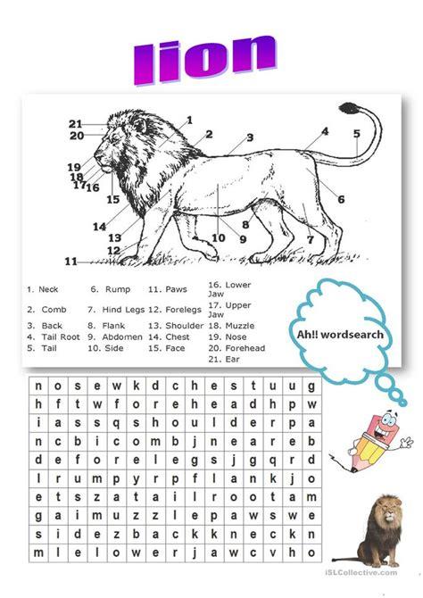 lion body parts vocabulary worksheet  esl printable