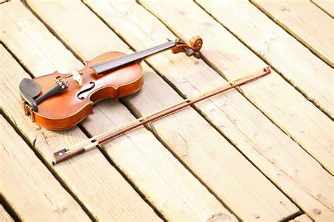 musical instruments violin string tree board