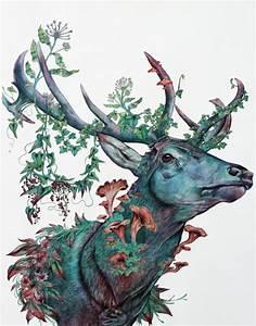 deer   Tumblr