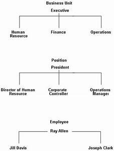 Example Of Organizational Chart Overview To Organizational Structure