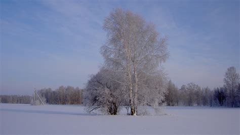 wallpaper  winter season hd wallpapers