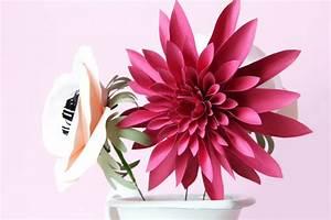 Fleur De Papier : s 39 offrir des fleurs en papiers la mouflette ~ Farleysfitness.com Idées de Décoration