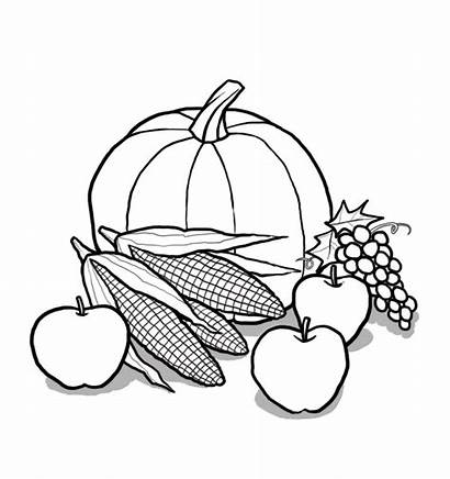 Harvest Clipart Drawing Clip Church Cliparts Arts