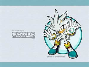 Silver Wallpapers Silver The Hedgehog Wallpaper 1336214