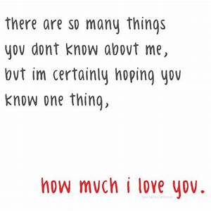 I Love You So Much I Would Quotes