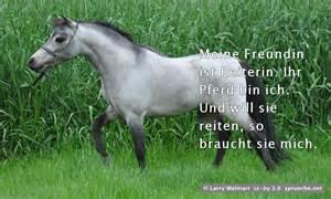 pferde sprüche spruch meine freundin ist reiterin ihr pferd bin ich und will sie reiten so braucht sie mich
