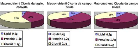 tabelle di composizione chimica e valore energetico degli alimenti cicoria catalogna cicoria asparago