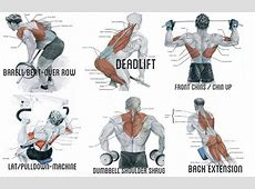 Exercise to Build Big Back Muscles back Pinterest