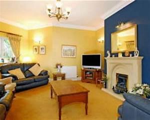 Blue Yellow Living Room Ideas