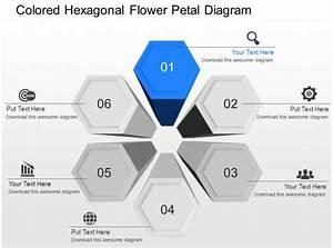 Ib Colored Hexagonal Flower Petal Diagram Powerpoint Template