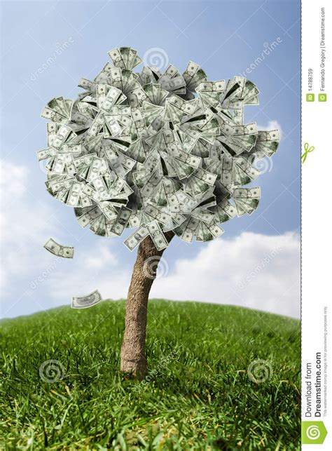 amazing money tree  grass  falling leaves royalty