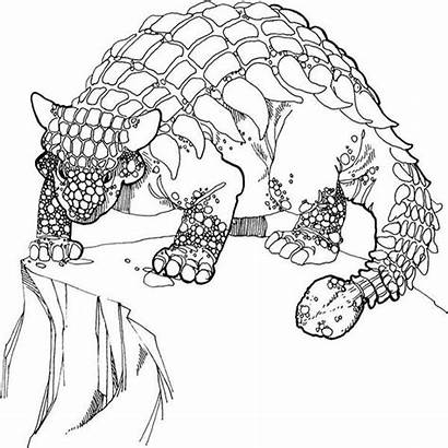Ankylosaurus Coloring Pages Cliff Dinosaur Stand Edge