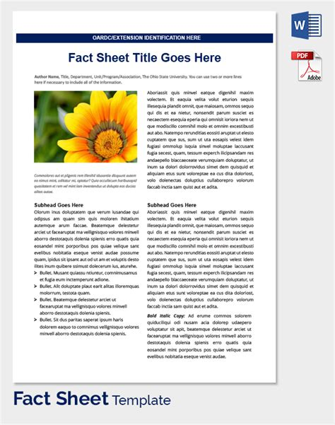 Health Fact Sheet Template fact sheet template 32 free word pdf documents