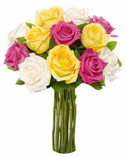 Vibrant Roses Vase Without