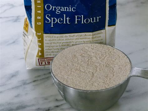 whole wheat flour substitute spelt flour substitute whole wheat flour