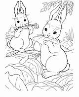 Bunny Rabbit Coloring Drawings Pages Animal Farm Popular Wild sketch template