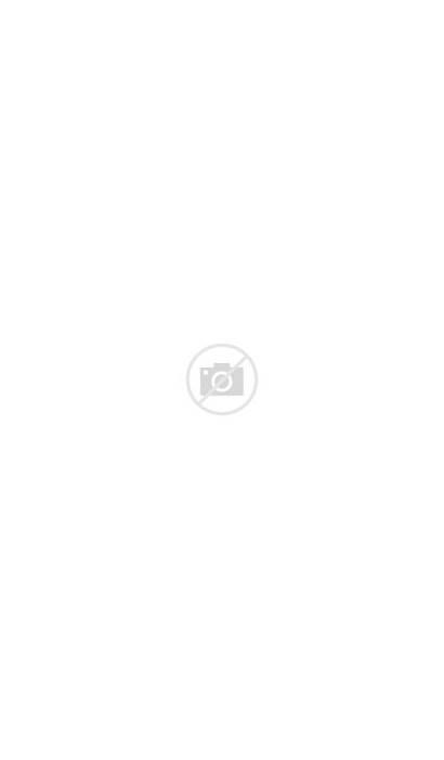 Palm Leaves Watercolor Leaf Transparent Tropical Watercolour