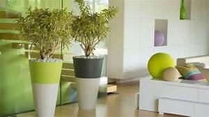 une nouvelle touche deco avec des bacs a plantes With affiche chambre bébé avec plantes vertes a fleurs