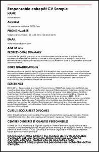resume template ms word cv gratuit responsable logistique