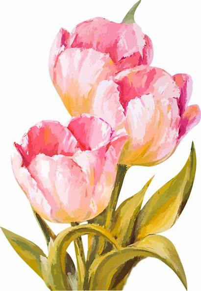 Watercolor Tulips Flowers Watercolour Drawing Paint Tubes