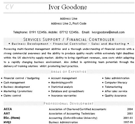 accounting cv exle financial accounting cv services