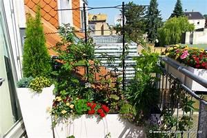 Winterharte Bäumchen Für Balkon : garten und balkon raumzauber sinnwelt ~ Buech-reservation.com Haus und Dekorationen