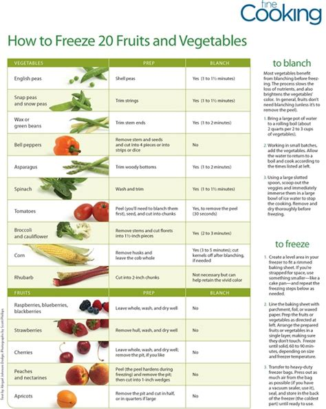 how to preserve in freezer 1000 images about freezing fruits veggies on pinterest preserve freezers and to work
