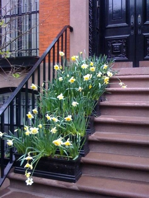 Best 25+ Front Stoop Decor Ideas On Pinterest  Front Steps Stone, Front Steps And Garden Ideas