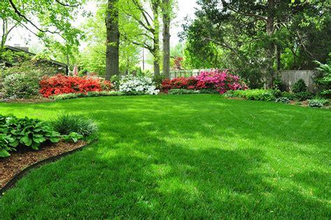 landscape lawn scenicview maintenance services