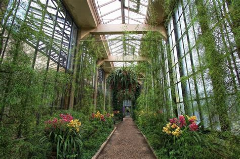 longwood gardens philadelphia 10 amazing indoor gardens mnn mother nature network