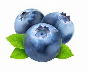 Blueberry on transparent background ~ Food & Drink Photos ...