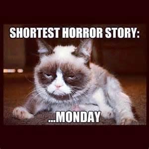 grumpy cat monday monday jokes on jokes about work monday humor