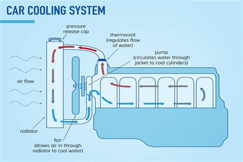Diagram System Vehicle Cooling by Why Engine Coolant Is So Important Car Servicing The Nrma