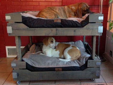 hundebett selber bauen hundebett selber bauen 13 gem 252 tliche ideen f 252 r ihren vierbeiner heimwerkertricks net seite