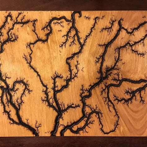 lichtenberg figures  fractal patterns