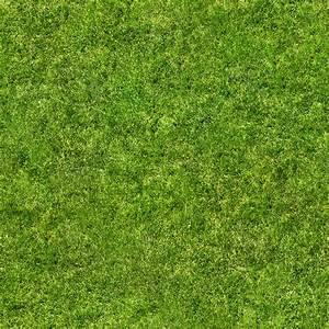 Texture jpg grass texture map
