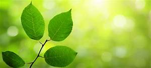 Climate and Environmental Psychology Contributes to a
