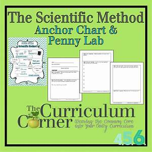 The Scientific Method Anchor Chart  U0026 Penny Experiment